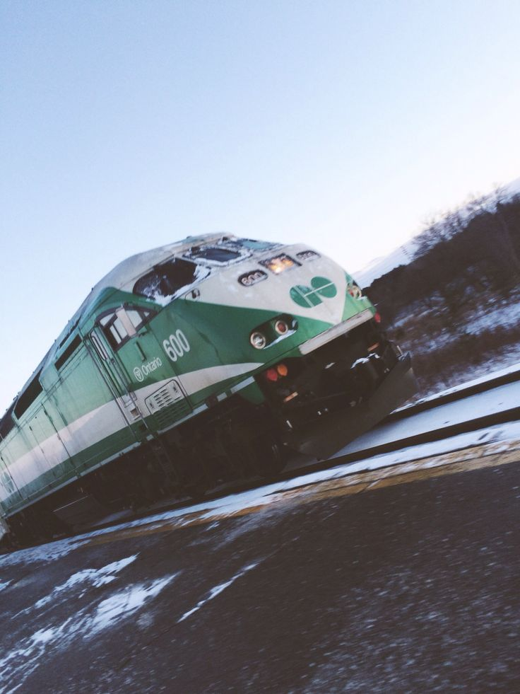 Cat go the train to Toronto from East Gwillimbury GO. Transit is so important to our community and we need federal assistance to make it better.