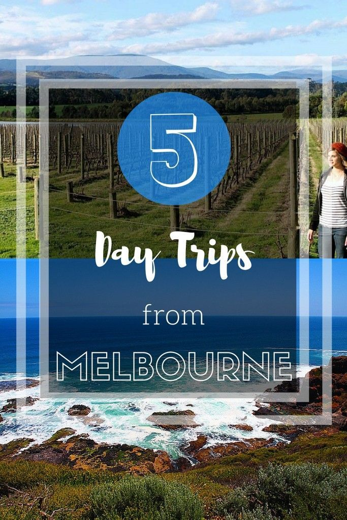 5 day trips to take from Melbourne