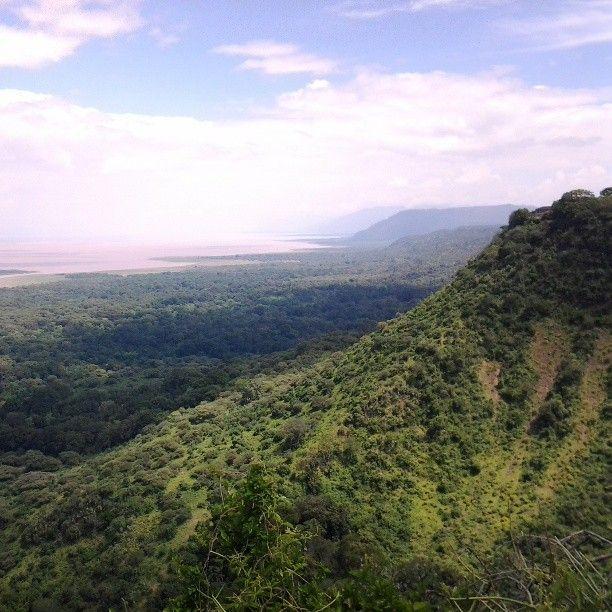 Lake Manyara National Park in Mkoa wa Arusha -  International Honeymoon Packages   www.uhpltd.com   Universal Holidays Private Limited - Chennai,India.