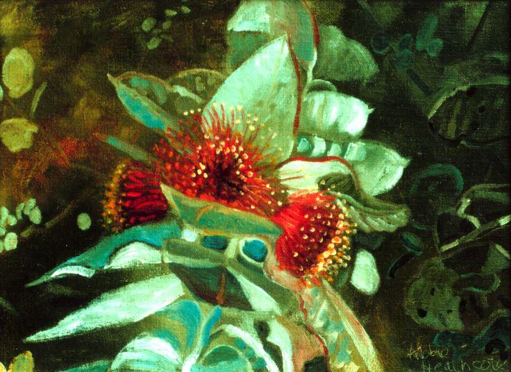 Mottelcah Blossoms © Abbie Heathcote