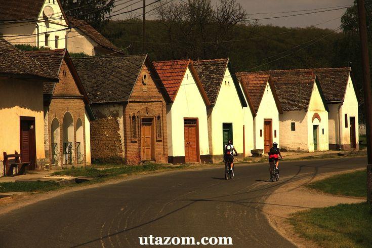 Villány: bor és kerékpártúra - Bringa, Messzi tájak Európa biciklitúra | Utazom.com utazási iroda