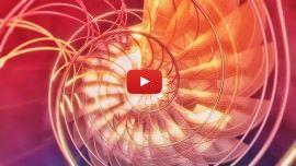 Fibonacci e a expressão do universo