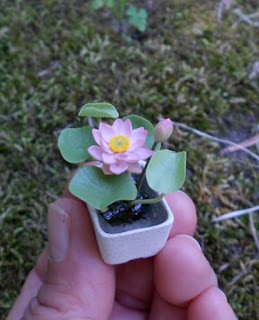Inpiration for second tutorial Pim's Mini Plants: How I make miniature Water Lily and Lotus