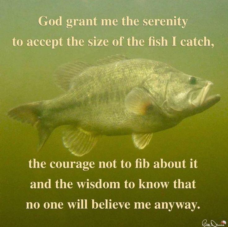 Best 20 Fishing Humor Ideas On Pinterest Funny Fishing