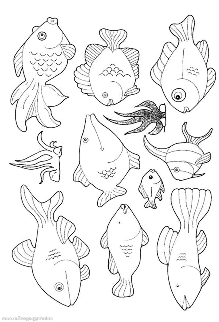 Colouring pages holi - Fish Printable Coloring Pages Png 2000 2941