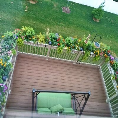 "Self watering deck railing planters over the rail.  This customer transformed their back deck into one of the ancient wonders of the world - ""Hanging Gardens of Nebuchadnezzar."""