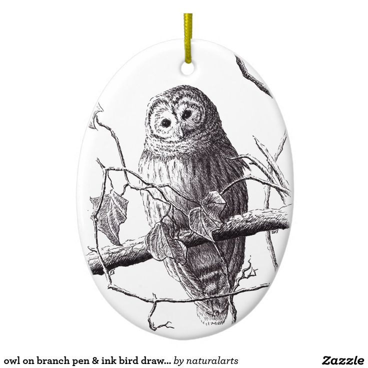 owl on branch pen & ink bird drawing Double-Sided oval ceramic christmas ornament