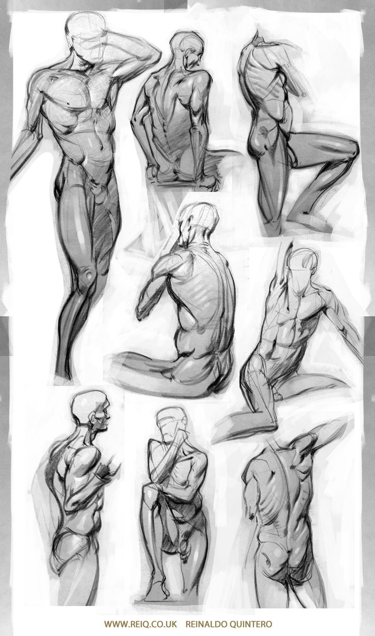 Life Drawing at CDA 3 by ~reiq on deviantART ✤ || CHARACTER DESIGN REFERENCES | キャラクターデザイン • Find more at https://www.facebook.com/CharacterDesignReferences if you're looking for: #lineart #art #character #design #illustration #expressions #best #animation #drawing #archive #library #reference #anatomy #traditional #sketch #artist #pose #settei #gestures #how #to #tutorial #comics #conceptart #modelsheet #cartoon #lifedrawing || ✤