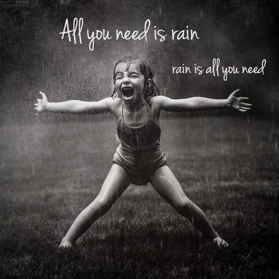 All you need is rain .. rain is all you need ..