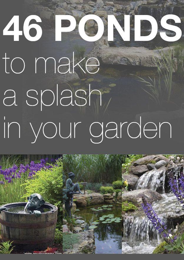 237 best images about garden ideas on pinterest for Garden pond life