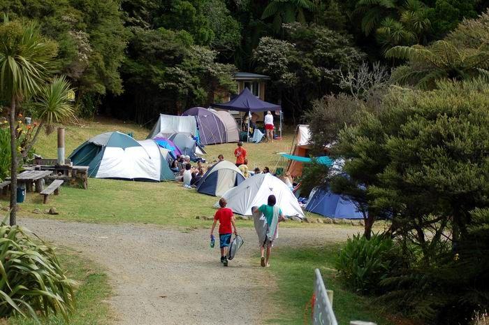 Harataonga Campsite, Great Barrier Island, Hauraki Gulf, New Zealand