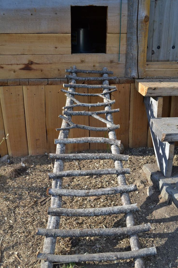 "chicken coop ladder- must make this too! Hang on 2-3 ""hooks"" so it is removable for cleaning. Also, make inside roosting perches out of branches??"