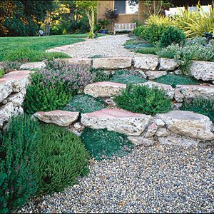 Plant your steps - Great Ideas from the Western Garden Book of Landscaping - Sunset Mobile