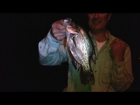 1000 images about panfish on pinterest northland tackle for Crappie fishing at night