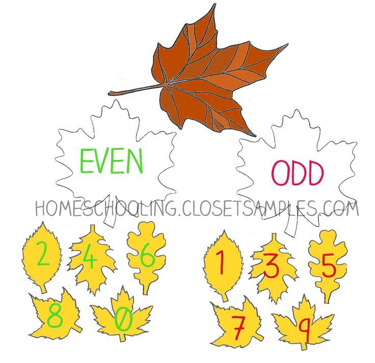 FREE 1st Grade Math: Odd &...