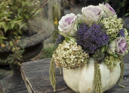 late summer / autumn bouquet of flowering kale, lavender, hydrangea, silk tassel bush