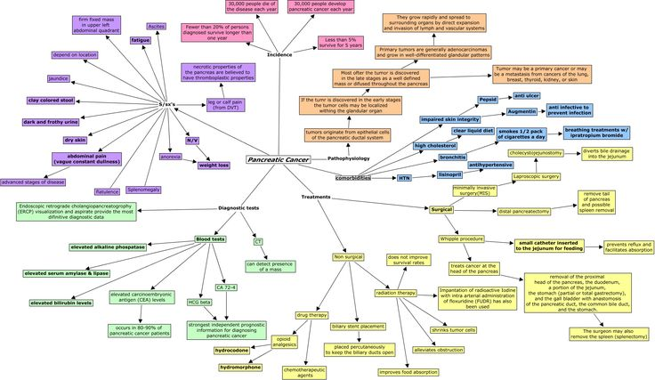 Pancreatic Cancer - concept map