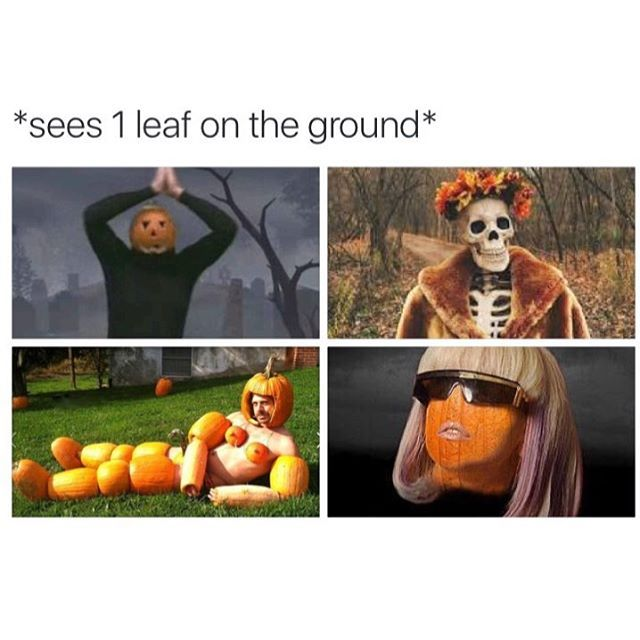 Pin for Later: 12 Memes For People Who Have Absolutely Zero Chill About Fall You're staring trees down in the hopes that their leaves will change.