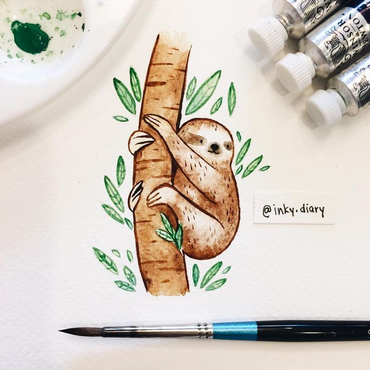 I watched the first episode of Planet Earth 2 yesterday, and just had to paint a sloth!! Did anybody else watch it (although I think it's not out in the US until January? :( )?What an amazing show! It's stunningly beautiful, and I learned so many new things  I can't wait for the next episode! Definitely one of my favorite shows of all time  - - #illustration #illustrationoftheday #art #instaart #instaartist #sketch #sketchbook #drawing #drawingoftheday #paint #painting #watercolor #cute #...