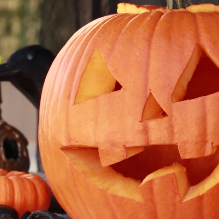 4 Ways To Preserve Your Pumpkin