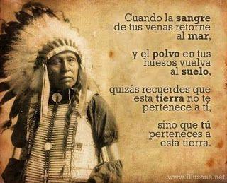 La vida de los Nativos Americanos: El significado de las plumas en la batalla