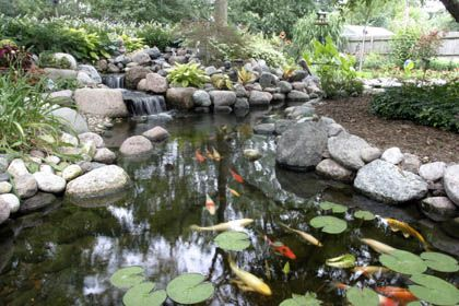 98 best pond bog filter ideas and designs images on for Koi pool water gardens thornton
