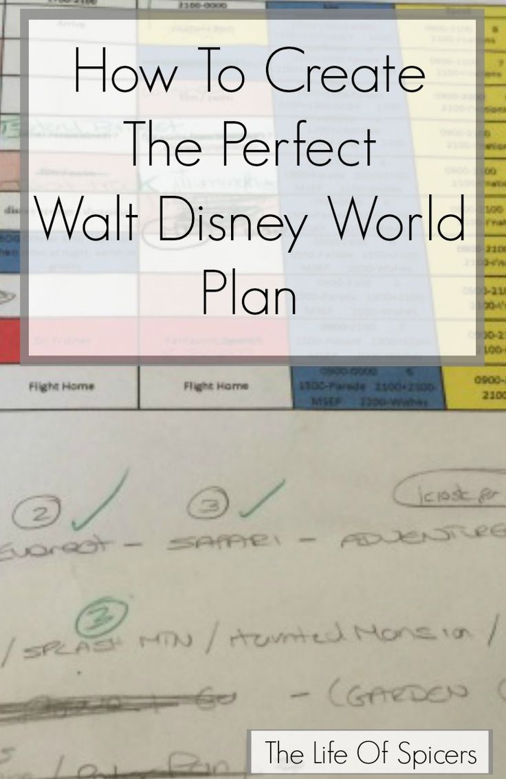 Planning a Disney World Holiday fills some people (like me) with joy and happiness but others may dread the planning stages and go with the flow. I talked about what I learned from my first visit t…
