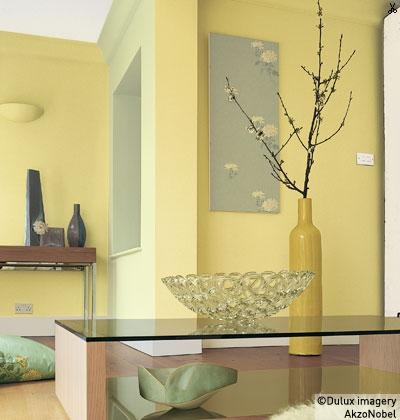 11 best wall colors images on Pinterest | Wall flowers, Wall paint ...