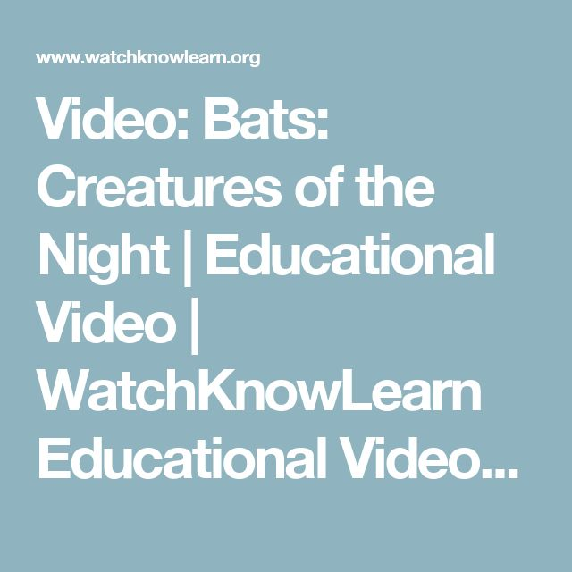 Video: Bats: Creatures of the Night | Educational Video | WatchKnowLearn Educational Videos | WatchKnowLearn