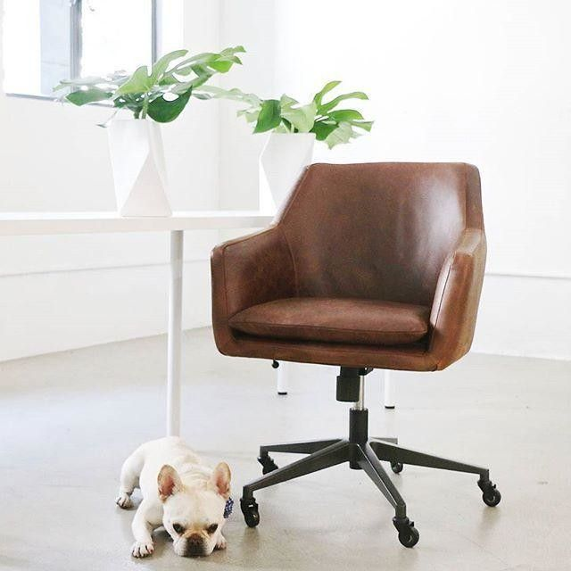 Best 20 modern office chairs ideas on pinterest for Contemporary home office chairs