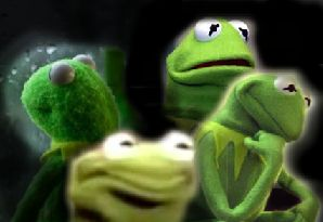 Best 25+ Kermit Face ideas on Pinterest | Frog meme ...