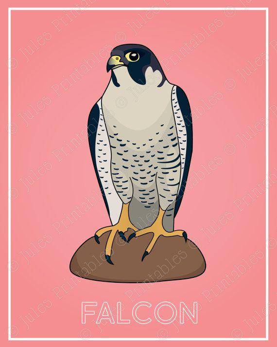Falcon Art Print Wildlife Wall Decor Animal Wall Art