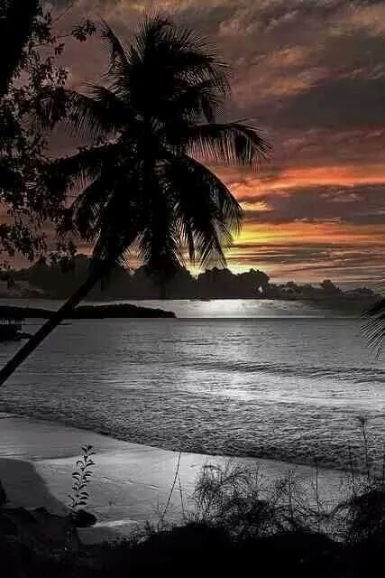 ~Sunset in Paradise~