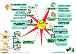 Living and Non-Living things mind map