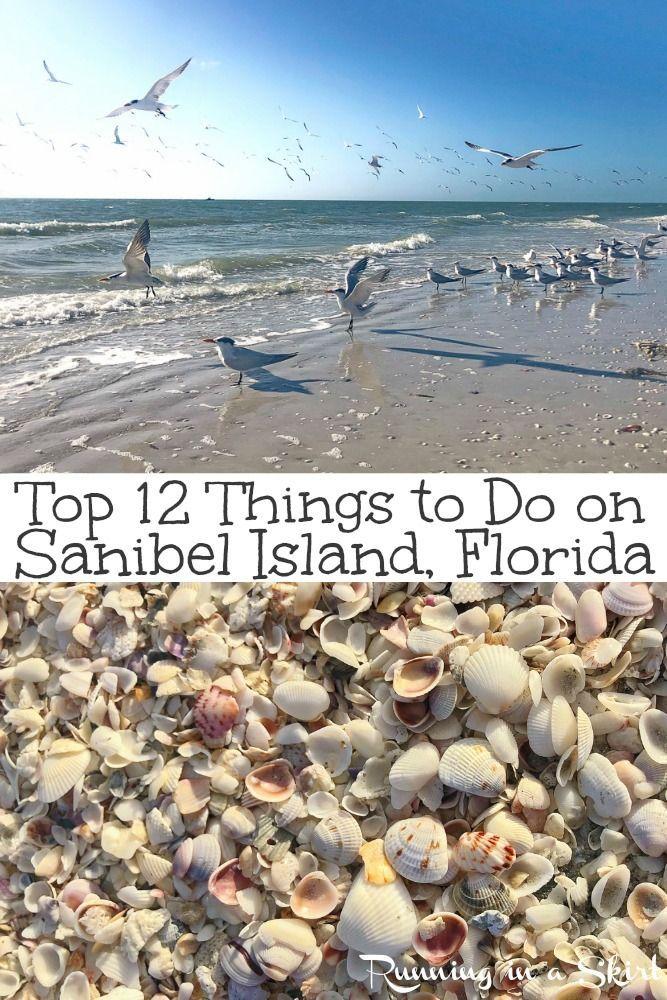 Top 12 Things To Do On Sanibel Island Florida Sanibel Island Florida Sanibel Island Sanibel Beach