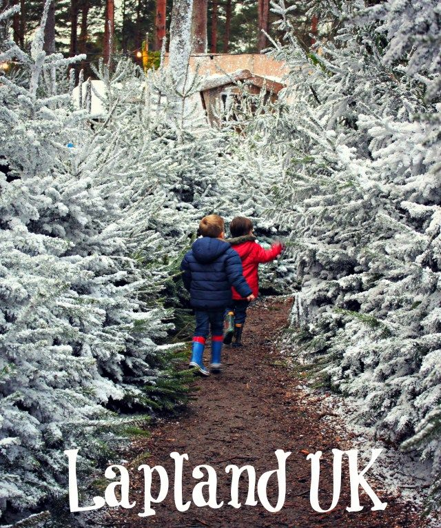 Reviewed: A Family Day Out at Lapland UK