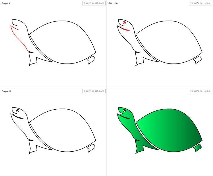 tortoise drawing for pinterest - photo #45