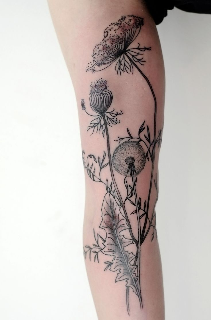 58 best t a t t o o images on pinterest drawings floral tattoos black and white dandelionqueen annes lace tattoo dhlflorist Images
