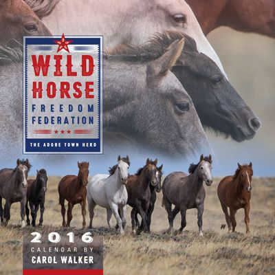 Good news! We all owe a huge thank you to Sen.Tom Udall, who restored the lost language from The Wild Horse and Burro Act into the Omnibus Spending Bill,whichwillprotectour wild horses and bu...