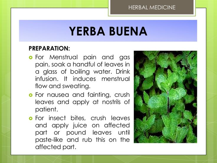 HERBAL MEDICINE  YERBA BUENA PREPARATION:  For Menstrual pain and gas pain, soak a handful of leaves in a glass of boilin...