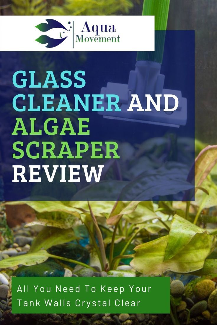 8 Best Aquarium Glass Cleaner Algae Scraper In 2020 Glass Cleaner Aquarium Maintenance Acrylic Aquarium