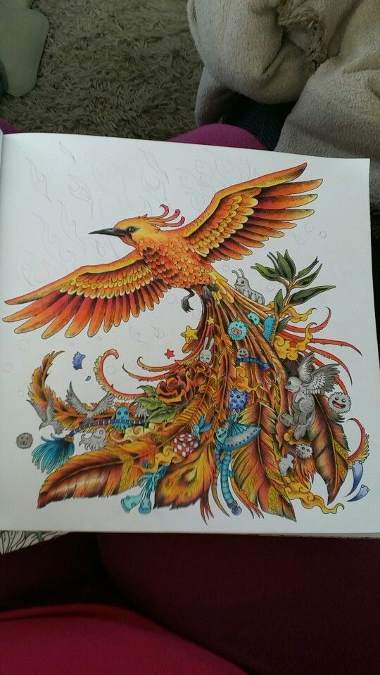 For More Information On The Animorphia Series See Mombooks Adult ColoringColoring BooksColoring
