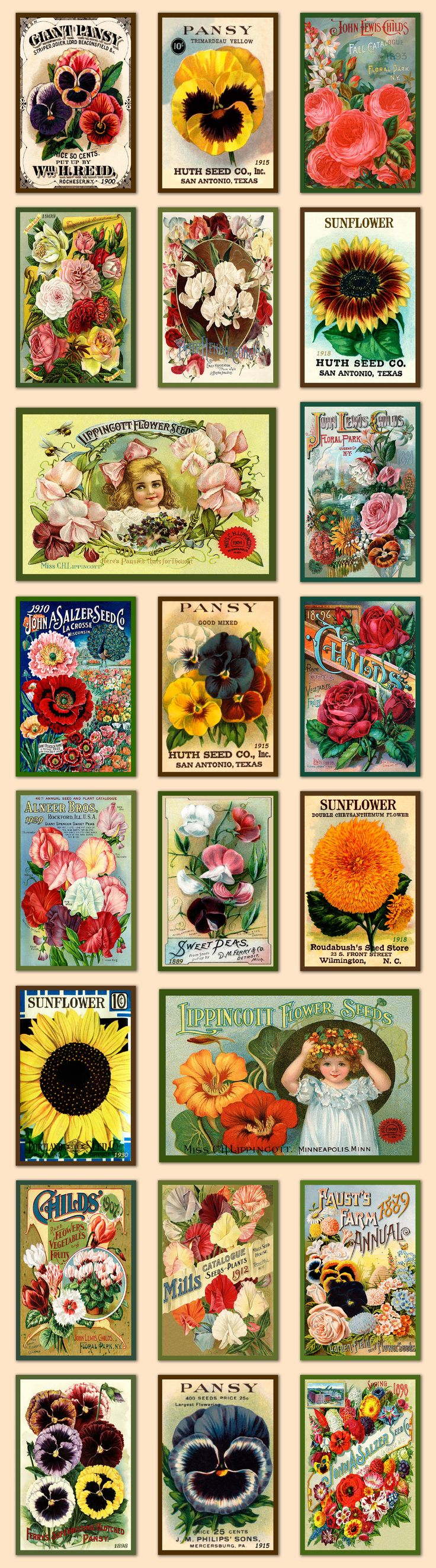 Vintage flower and seed packet quilt block sets. Available for purchase as quilt blocks in various sizes at oldemaericaantiques.com.