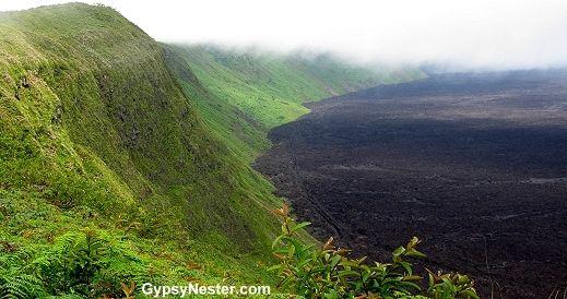 The rim of Volcán Sierra Negra, Isabella Island, Galapagos, Ecuador