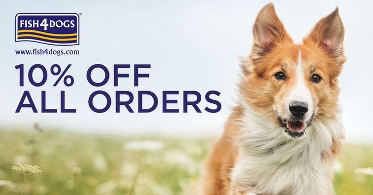 **Last Day to Save an Extra 10% on ALL Orders** www.fish4dogs.com Ends today! #Fish4DogsOffers