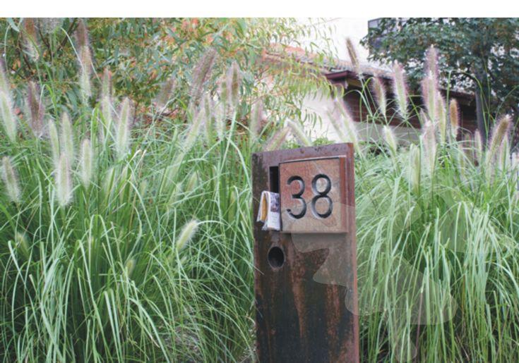 Image result for native front gardens