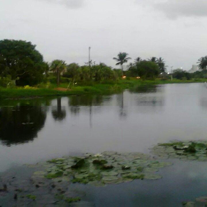 Lagoa do Colosso