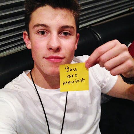 "Shawn Mendes. ""Do Something"" project. :)"