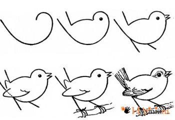 Kolay hayvan çizimi 12 adet örnek şablon 9