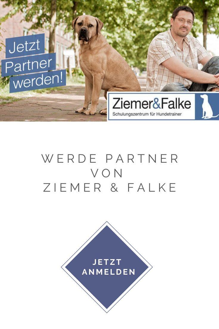Partnerprogramm Von Hundetrainer Hundetrainer Ausbildung Trainer